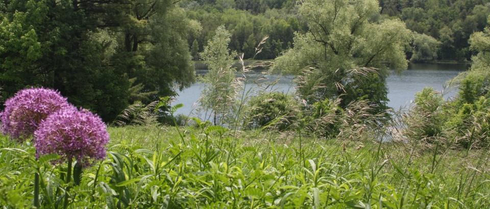 Lake08