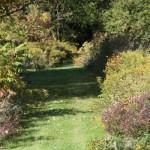 trails01