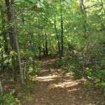 trails02