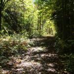 trails03