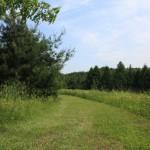 trails09