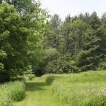 trails14
