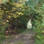 trails25