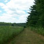 trails28